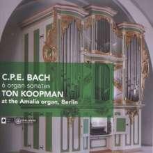 Bach, C.Ph.E.